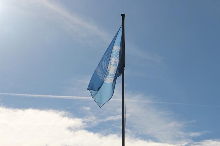 3_un-flag